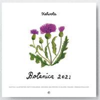 マッティ・ピックヤムサ/ 2021 カレンダー「BOTANICA」