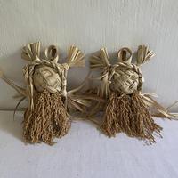 種水土花 祝海亀 M