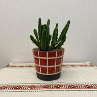 一翠窯 4寸植木鉢