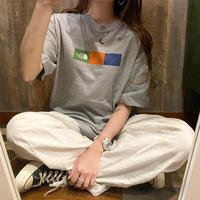 USA製THE NORTH FACE Tシャツ