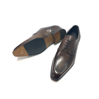 ARISTO primo | AP249 D.Brown