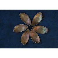 箸置き 花弁(先が丸い) 真鍮 田中友紀  2