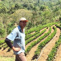コスタリカ ラ・リア サンロレンソ農園 「サンロレンソE47」中浅煎り 100g