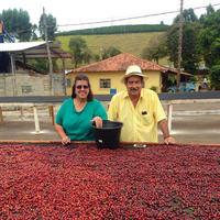 ブラジル イシドロ・ペレイラ農園 「ブルボン・アマレロ」中煎り 200g