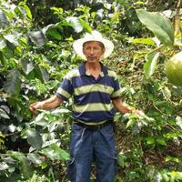 コロンビア ラ・エスペランサ農園産「エルナンド・ゲイシャ」中浅煎り 200g