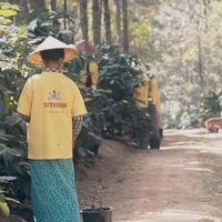 ミャンマー 「シッター農園 SL28」中煎り 200g