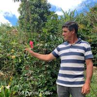 コスタリカ プエンテタラス サンマルティン農園「ロドルフォ・ゲイシャ」中浅煎り 100g