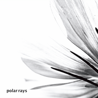 polar rays  / 保刈久明
