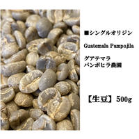 【生豆】single   グアテマラ パンポヒラ農園 500g
