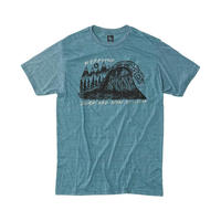 HIPPY TREE PEAKS TEE Heather Teal