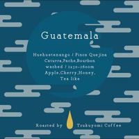 グァテマラ・ウエウエテナンゴ・コンセプシオン ウイスタ・ケヒナ農園/ウォッシュド 100g