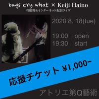【応援チケット1000】2020.8.18『bugs cry what × Keiji Haino』