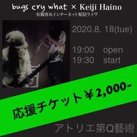 【応援チケット2000】2020.8.18『bugs cry what × Keiji Haino』