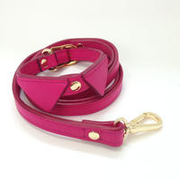 Pink Collar&Lead