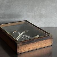 古道具部 木製ガラス蓋のコレクションBOX  A・B
