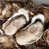 【産直!】ブランド荒波牡蠣 『殻付』 30個詰め