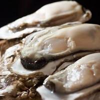 【産直!】ブランド荒波牡蠣 『殻付』 60個詰め