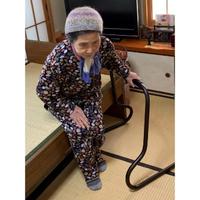「スタンバーレイナ」 立ち上がり補助手すり【組立不要】 日本製