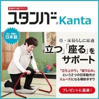 「スタンバーカンタ」 立ち上がり補助手すり【組立不要】 日本製