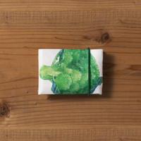 カードケース VEGE ブロッコリー