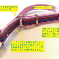 【ベースカラーを選べる!】リミテッドチョークカラー(マルチストライプC)Sサイズ