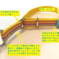 【ベースカラーを選べる!】リミテッドチョークカラー(マルチストライプA)Sサイズ