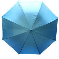 hosomakinokasa ~ホソマキノカサ~BLUE