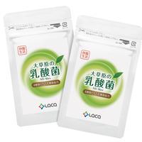 大草原の乳酸菌NS-Max(36カプセル)×2袋セット