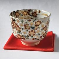 紅白梅図 茶碗|山本 雄次