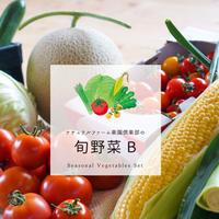 楽園倶楽部のおすすめ旬野菜セットB