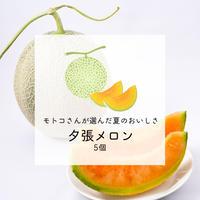 【みずみずしい初夏の甘さ】モトコさんが選んだ夕張メロン 5個セット【ご注文後7日以内に発送】