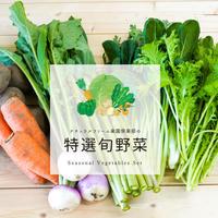 楽園倶楽部の春のおすすめ旬野菜セット(極太アスパラ付)
