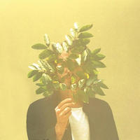 French Kiwi Juice / FKJ