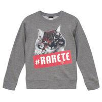 RARETE (ラルテ)  猫 デビットボーイ  グレイ 星柄 star(裏パイル)