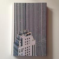The Rendering Eye: Urban America Revisited By Regula Bochsler, Philipp Sarasin