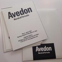 Murals & Portraits Cards By Richard Avedon