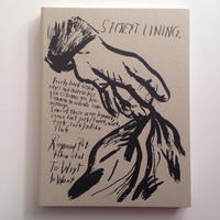 To Wit By Raymond Pettibon