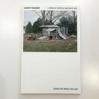 I Wish U Would Believe Me by Jason Vaughn