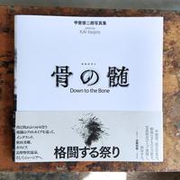 骨の髄 / 甲斐啓二郎