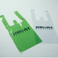 RBLS SP LOGO PVC BAG