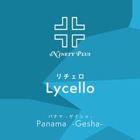 """Ninety Plus """"lycello"""" 100g《数量限定》"""