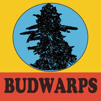 BUDWARPS (BEAT ALBUM)