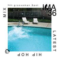 grooveman Spot (IMA #36)