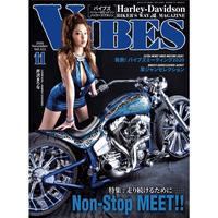VIBES vol.325