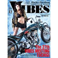 VIBES vol.314
