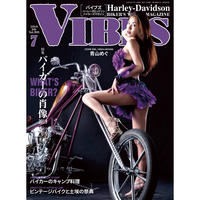 VIBES vol.309