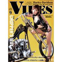 VIBES vol.311