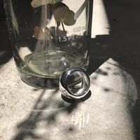silver925 ring-baobab-〈StyleNo.010613-3〉