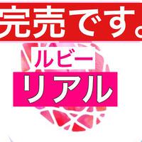 【完売】51.1万円相当→25万円(今だけ26.1万円引き)ルビーコース(リアルセミナー受講)