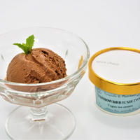 ミルキーヴィーガンアイスクリーム【ちょっぴりお得な12個】スパイスチョコ